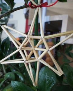 Nendrinė žvaigždė